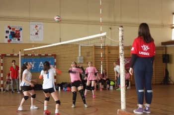 CDF UGSEL volley